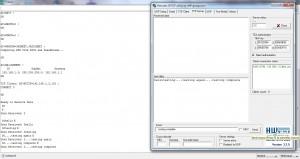 TCP Client Output