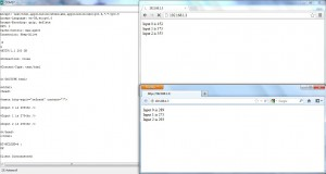 Web Server Output