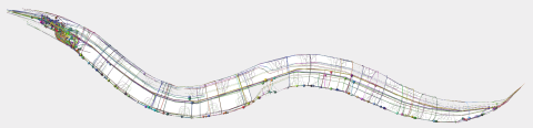 c elegans neurons map